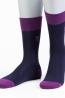Классические мужские носки SERGIO di CALZE 15SC17 cotton mercerized - фото 1