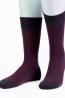 Шерстяные мужские носки Sergio Di Calze 15SC6 wool merino - фото 1