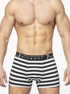 Боксеры Salvador dali 2059-1