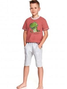 Детская пижама для мальчиков с шортами и футболкой с принтом динозаврик