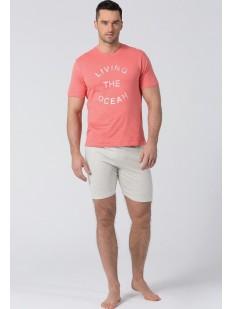 Мужская летняя хлопковая пижама с шортами