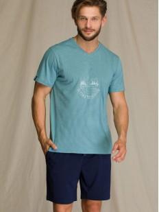 Летняя мужская пижама с однотонными шортами и футболкой из хлопка