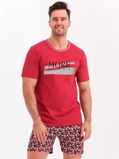 Мужская хлопковая летняя пижама с принтованными шортами