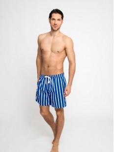 Пляжные мужские шорты в вертикальную полоску