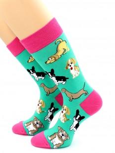 Яркие разноцветные женские носки с собачками